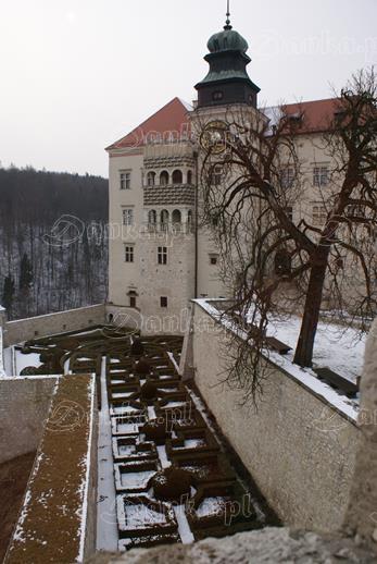 Zamek-na-Pieskowej-Skale-18-Danka